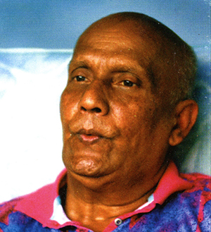 My Heart-Whistle-Birds by Sri Chinmoy