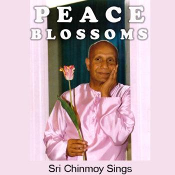 """Peace-Blossoms"" – Lieder zum Thema Frieden"